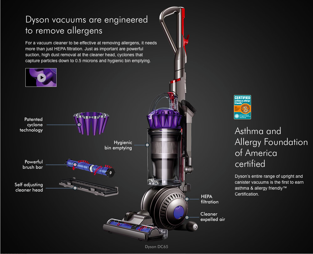 Dyson Dc65 Animal Vacuum Cleaner Denver Colorado
